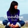 Misaki Goodbye