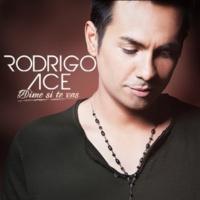 Rodrigo Ace Dime Si Te Vas [Radio Edit]