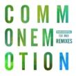 Rudimental Common Emotion (feat. MNEK) [Remixes]