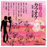 コロムビア・オーケストラ 愛燦燦