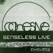 Senseless Live Sunrise Pilgrum