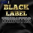 SBI Audio Karaoke Let Her Go (Originally Performed by Passenger) [Karaoke Version]