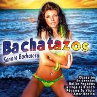 Sonora Bachatera Antología de Caricias