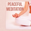Pure Yoga & Meditation Music Ensemble Mantra Meditation