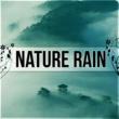 Nature Sounds Universe