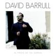 David Barrull Pirata Del Barco