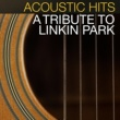 Acoustic Hits New Divide
