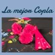 Rosita Ferrer Suspiros de España