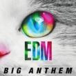 Tiësto EDM -Big Anthem-