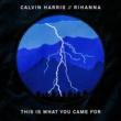 Calvin Harris ディス・イズ・ホワット・ユー・ケイム・フォー feat. リアーナ