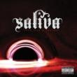Saliva Unshatter Me