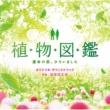 羽毛田 丈史 「植物図鑑 運命の恋、ひろいました」オリジナル・サウンドトラック