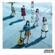 AKB48 翼はいらない<Type A>(通常盤)
