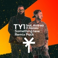 TY1/Andrea D'Alessio Something New (feat.Andrea D'Alessio) [Remix Pack]