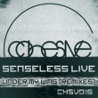 Senseless Live Sunrise Pilgrum (David Granha Sunset Remix)