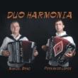 Duo Harmonia Manuel Bráz e Fernando Lopes