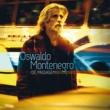 Oswaldo Montenegro Não Importa Por Quê