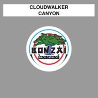 Cloudwalker Canyon
