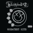 blink-182 ホワッツ・マイ・エイジ・アゲイン
