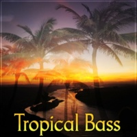 Tropical Chill Music Land Tropical Bass ‐ Latino Bar, Balearic Lounge, Deep Dive