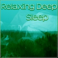 Deep Sleep Music Academy Relaxing Deep Sleep ‐ Nature, Dream, Therapy Sleep, Total Relax, Easy Listening, Peaceful Music