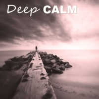 Calm Music Zone Deep Calm ‐ Concentration Relaxation Meditation Music, Focusing, Nature Sounds, Stillness