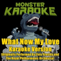 Monster Karaoke What Now My Love (Originally Performed By Elvis Presley with The Royal Philharmonic Orchestra) [Karaoke Version]