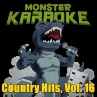 Monster Karaoke Country Hits, Vol. 16