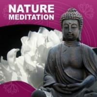 Relaxation & Meditation Academy Nature Meditation - Relaxing Massage, Nature Meditation Music, Free Your Spirit, Soft Sounds