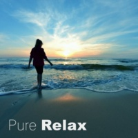 Relaxing Music Guys Pure Relax ‐ New Age Sounds for Relaxation at Work Office or Home, Sounds of Nature, Pure Relaxation, Relaxing Music, Healing Sound Therapy