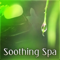Soothing Spa Paradise Soothing Spa ‐ Calm Spa, Soothing Spa, Relaxation During Beauty Day
