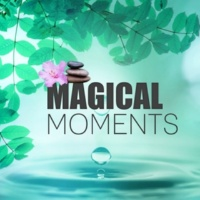 Calm Spa Universe Magical Moments ‐ Beauty Spa & Wellness, Perfect Music for Massage