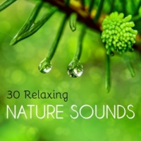 Spiritual Health Music Academy 30 Relaxing Nature Sounds - Soothing Water and Earth Noises to Improve Meditation and Sleep
