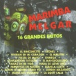 Marimba Melgar El Rinconcito