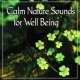 Echoes of Nature, Relaxing Music Therapy Calm Nature Sounds for Well Being - Yoga Music, Meditation, Relaxation, Serenity Spa, Deep Sleep, Massage & Inner Peace