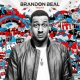Brandon Beal/Christopher/HEDEGAARD Drop That Booty Down Low (feat.Christopher/HEDEGAARD)
