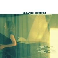 David Brito Caminante