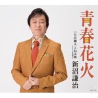 新沼謙治 左官職人 こね太郎 (オリジナル・カラオケ)