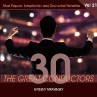 Evgeny Mravinsky Symphony No. 6 In B Minor, Op. 74, Pathetic: IV. Finale: Adagio lamentoso