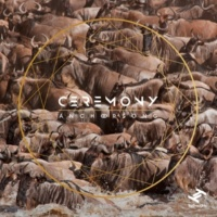Anchorsong Ceremony (Foreign Skin Remix)