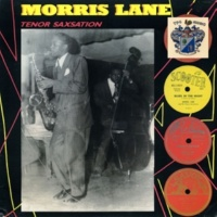 Morris Lane Blues in the Night