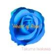 Takuma Iwakawa Heart of Rose