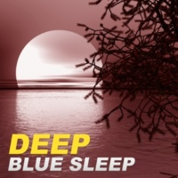 Restful Sleep Music Academy Music for Stress Relief
