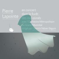 Pierre Lapointe De Glace