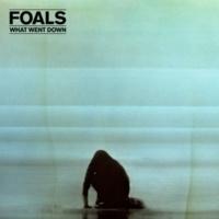 Foals Mountain At My Gates (Alex Metric Remix)