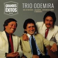 Trio Odemira Por Amor