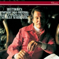 "Academy of St. Martin in the Fields/Sir Neville Marriner Beethoven: Symphony No.6 in F, Op.68 -""Pastoral"" - 2. Szene am Bach: (Andante molto mosso)"