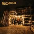 ブロッサムズ Blossoms