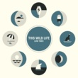 This Wild Life Break Down (Live Session)