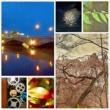 Qrobot 萬代橋の詩